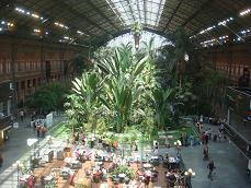 Treinstation Atocha, een van de mooiste ter wereld