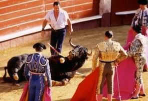 Stierenvechten is een eeuwenoude traditie en maakt deel uit van de Spaanse cultuur.