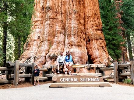 Sequoia NP is beroemd vanwege de hoogste boom ter wereld: de Sequoia Sempervirens, de General Sherman.