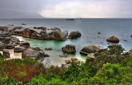 Boulder Beach, vlakbij Kaapstad in Zuid-Afrika.