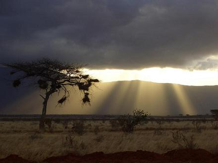 Kenia 2006
