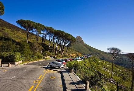 De Tafelberg bij Kaapstad is een tafelberg op de westelijke kaap die uitkijkt over Kaapstad. De lengte is ongeveer drie kilometer. De achterkant van de berg is complexer dan men zou denken wanneer men de berg van voren ziet. Het hoogste punt op de Tafelberg is McLear's Beacon met 1086 meter. Aan de linkerzijde van de Tafelberg bevindt zich Duiwelspiek en aan de rechterkant wordt de Tafelberg geflankeerd door de Twaalf Apostels en Leeuwkop.